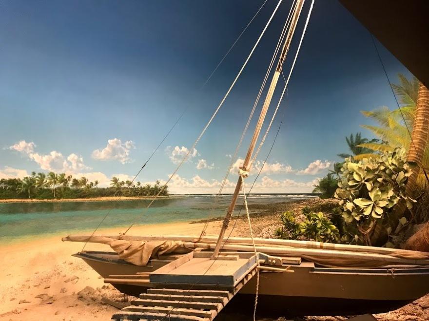 Shoreline 5